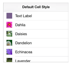 19-default cell